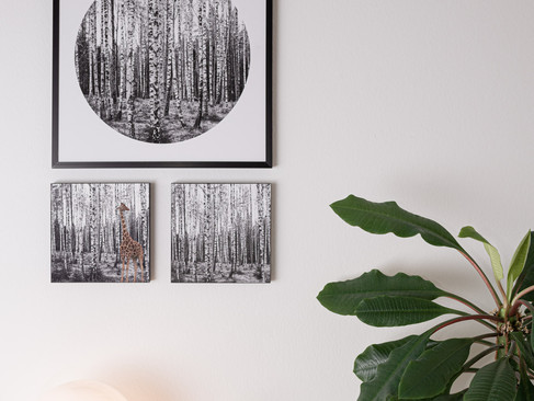 Kunstdruck 32x32cm inkl. schwarzem Aluminium-Bilderrahmen   Set 99€  Artikelnr: 4016 Bestellung per Kontaktformular