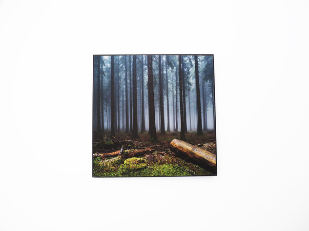 Holzbild 15x15cm  Kunstdruck auf schwarz durchfärbtem MDF. Zum hinhängen und hinstellen!  29€  Artikelnr: 2019 Bestellung per Kontaktformular