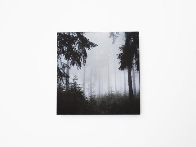 Holzbild 15x15cm  Kunstdruck auf schwarz durchfärbtem MDF. Zum hinhängen und hinstellen!  29€  Artikelnr: 2012 Bestellung per Kontaktformular