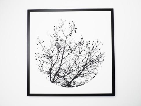 Kunstdruck 32x32cm inkl. schwarzem Aluminium-Bilderrahmen.  49€  Artikelnr: 4002 Bestellung per Kontaktformular