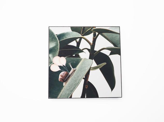 Holzbild 15x15cm  Kunstdruck auf schwarz durchfärbtem MDF. Zum hinhängen und hinstellen!  29€  Artikelnr: 2015 Bestellung per Kontaktformular