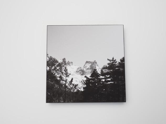 Holzbild 15x15cm  Kunstdruck auf schwarz durchfärbtem MDF. Zum hinhängen und hinstellen!  29€  Artikelnr: 2003 Bestellung per Kontaktformular
