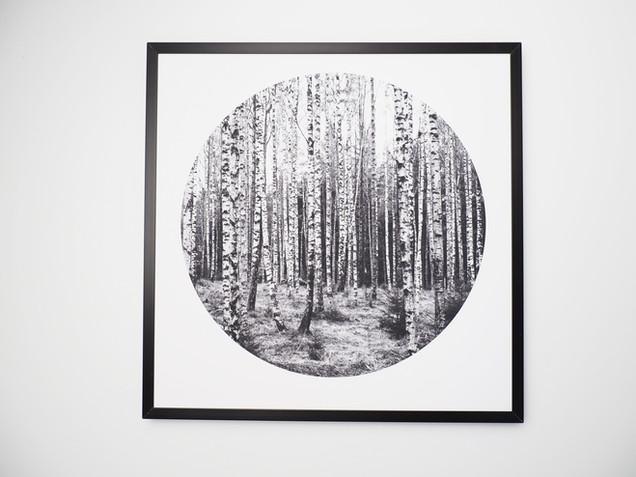Kunstdruck 32x32cm inkl. schwarzem Aluminium-Bilderrahmen.   49€  Artikelnr: 4004 Bestellung per Kontaktformular