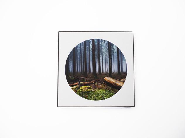 Holzbild 15x15cm  Kunstdruck auf schwarz durchfärbtem MDF. Zum hinhängen und hinstellen!  29€  Artikelnr: 2018 Bestellung per Kontaktformular