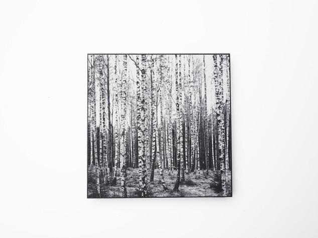 Holzbild 15x15cm  Kunstdruck auf schwarz durchfärbtem MDF. Zum hinhängen und hinstellen!  29€  Artikelnr: 2004 Bestellung per Kontaktformular