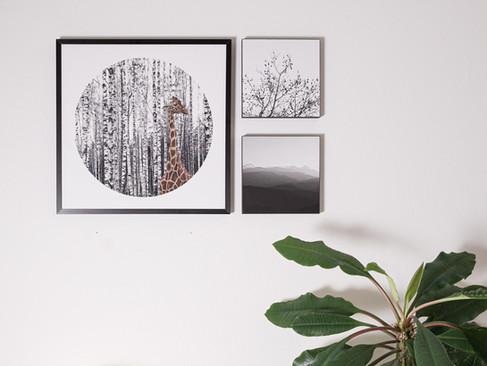 Kunstdruck 32x32cm inkl. schwarzem Aluminium-Bilderrahmen   Set 99€  Artikelnr: 4014 Bestellung per Kontaktformular