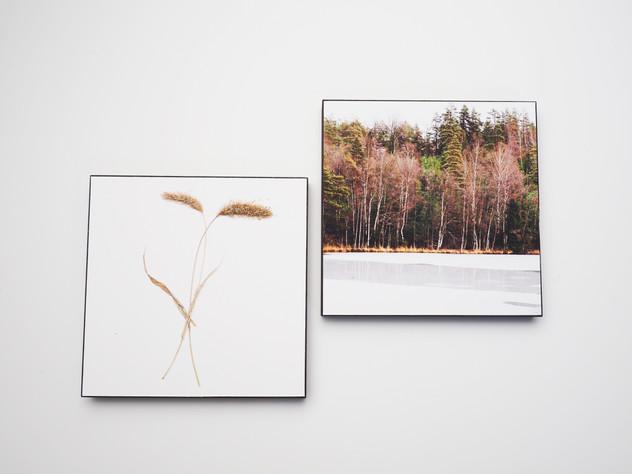 Holzbild 15x15cm  Kunstdruck auf schwarz durchfärbtem MDF. Zum hinhängen und hinstellen!  je 29€  Artikelnr: 2022 & 2024 Bestellung per Kontaktformular