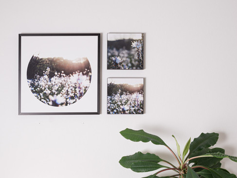 Kunstdruck 32x32cm inkl. schwarzem Aluminium-Bilderrahmen   Set 99€  Artikelnr: 4018 Bestellung per Kontaktformular
