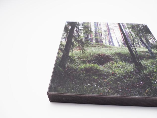 Holzbild 15x15cm  Kunstdruck auf schwarz durchfärbtem MDF. Zum hinhängen und hinstellen!  29€  Artikelnr: 2013 Bestellung per Kontaktformular
