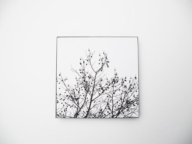 Holzbild 15x15cm  Kunstdruck auf schwarz durchfärbtem MDF. Zum hinhängen und hinstellen!  29€  Artikelnr: 2001 Bestellung per Kontaktformular