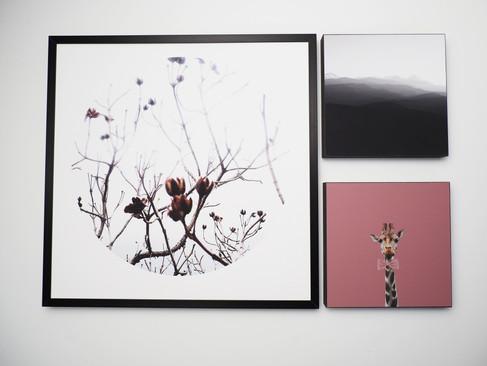 Kunstdruck 32x32cm inkl. schwarzem Aluminium-Bilderrahmen + 2x MDF Bilder 15x15cm.  Set 99€  Artikelnr: 4008 Bestellung per Kontaktformular