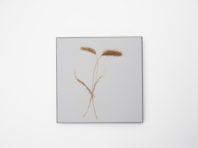 Holzbild 15x15cm  Kunstdruck auf schwarz durchfärbtem MDF. Zum hinhängen und hinstellen!  29€  Artikelnr: 2024 Bestellung per Kontaktformular