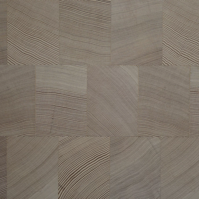 douglas fir snow white end grain.png