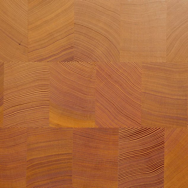 douglas fir end grain wood.png