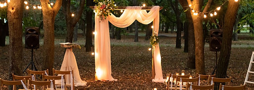 Wedding arch in the woods with light bul