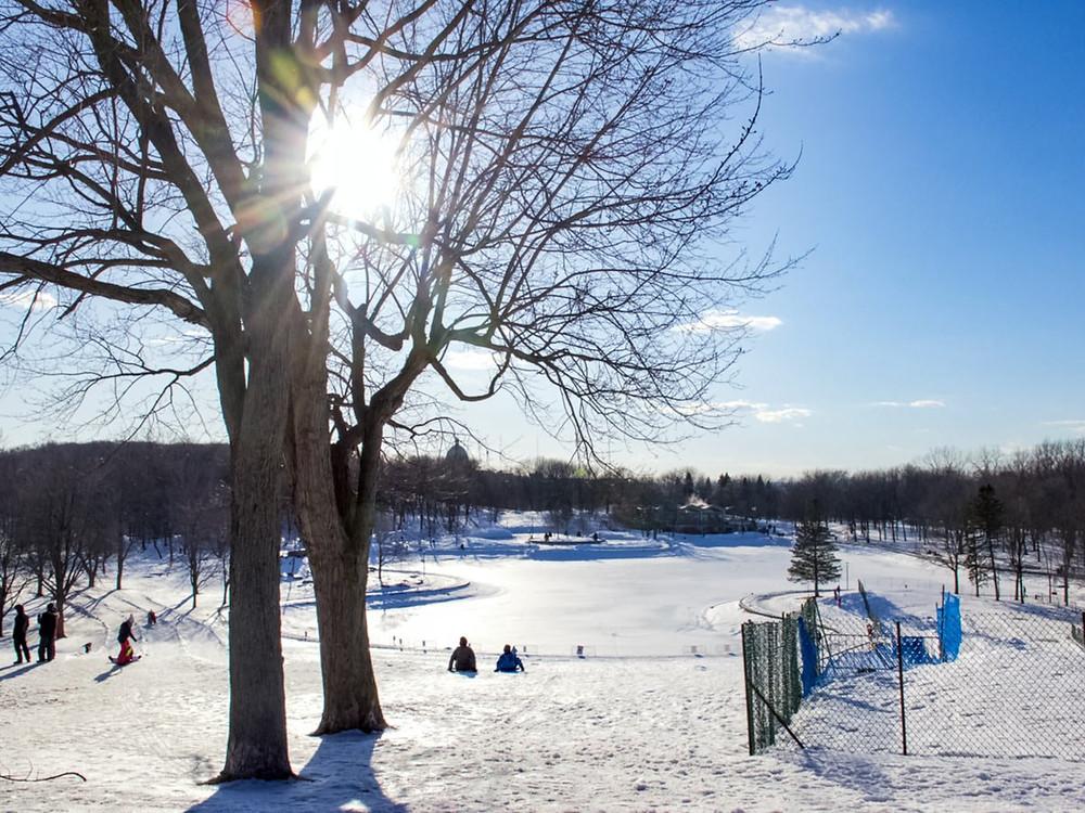 parc lafontainel winter park sledding tobogganing