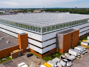 Montreal company makes world's biggest rooftop greenhouse