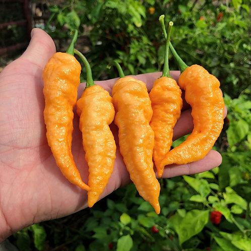Peach Ghost Pepper Seeds