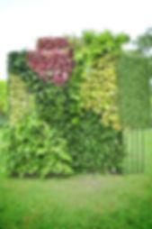 Création mur végétal Pau 64