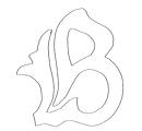 Berna Logo.png