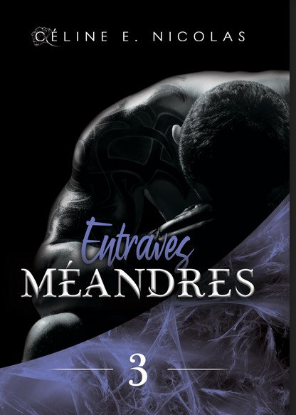 MEANDRES: Tome 3 : Entraves