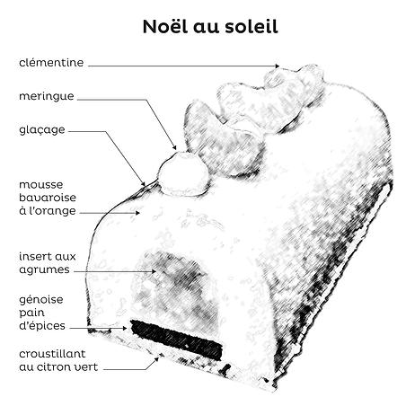 BUCHE NOEL AU SOLEIL_DESCRIPTIF.png