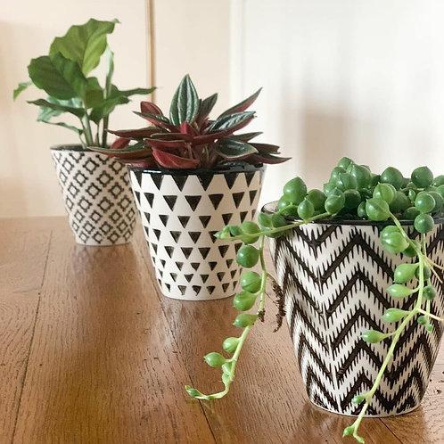 Geo trio planters