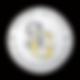 sandg logo.png
