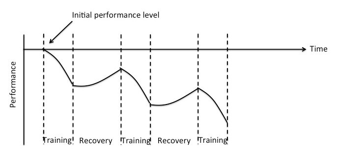 Figure 1 - Overtraining Graph