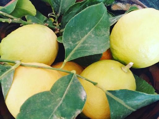 Jus de citron détox