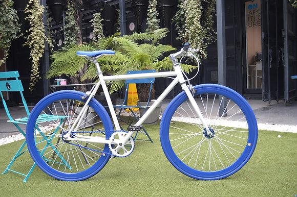 Teman - White/Blue -V7
