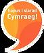 Siarad-Cymraeg-pic-249x300.png