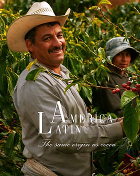 Coffee%20LATAM%20Specialties%20Page%20Ho