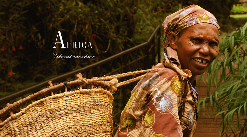 Categories Page Horizontal Banner Africa