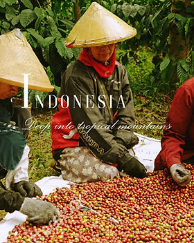 Coffee%20Indonesia%20Specialties%20Page%