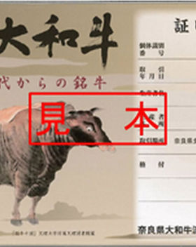 Beef Page Photo Yamato Wagyu 01_webfull.