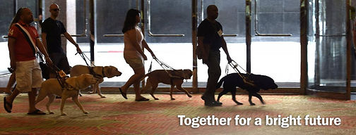 ACB Together for Bright Future-Guide Dog Walkers.jpg