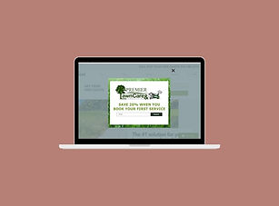 Laptop Mockup .jpg
