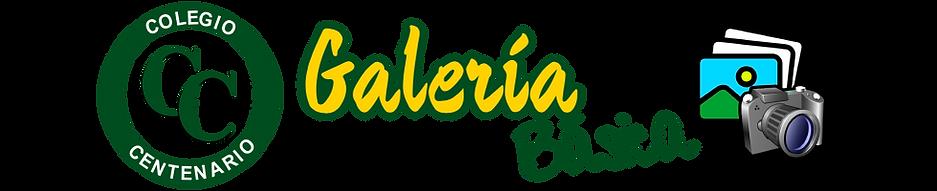 BANNER GALERÍA BÁSICA.png