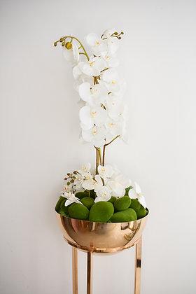 Orchids Arrangement in Metal Standee Pot