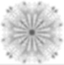 צילום מסך 2020-03-25 ב-2.42.47 אח׳.png