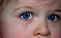childrens-eyes-1914519__340 (1)