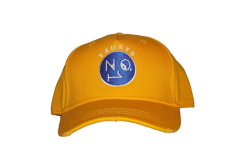 Trusts No1 - Yellow Blue Face