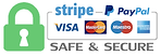 paypal-stripe theno1face.png
