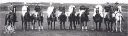 Hexham Polo Club History