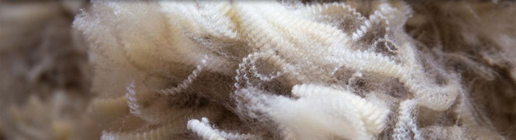 Glenthompson-banner-wool-1024x279.jpg