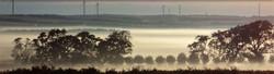 Glenthompson-banner-landcare-2-1024x279.jpg