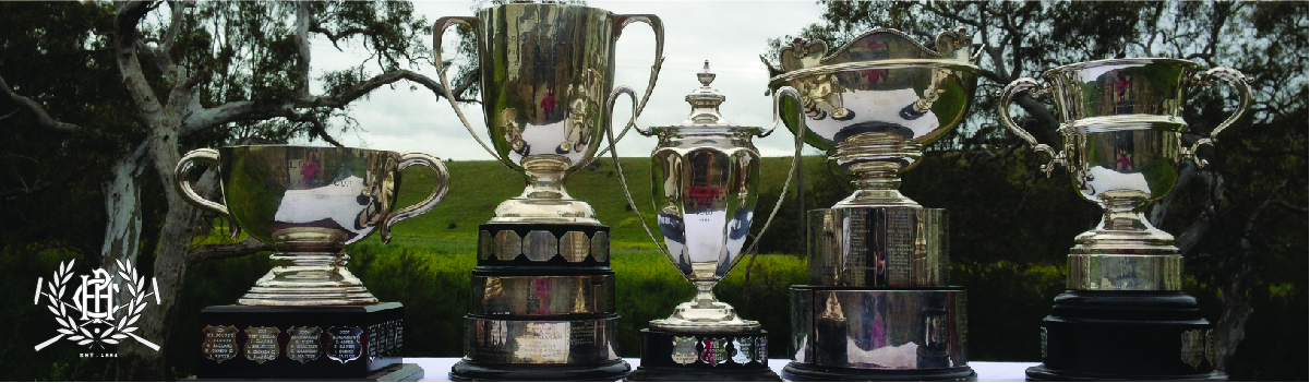 Hexham Polo Club Silverware