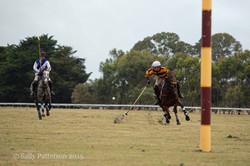 Hexham - Dunkeld Polo 2015