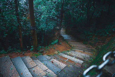 rain-4151391__340.jpg